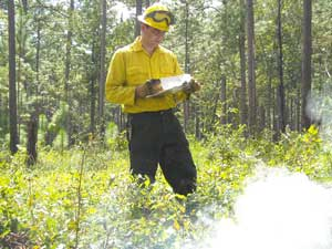 Kevin Robertson, Ph.D., Fire Ecologist