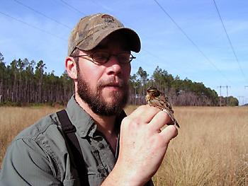 Joe Burnam with Henslow's sparrow